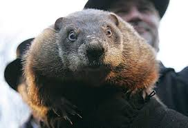 Punxsutawney Phil at age 130